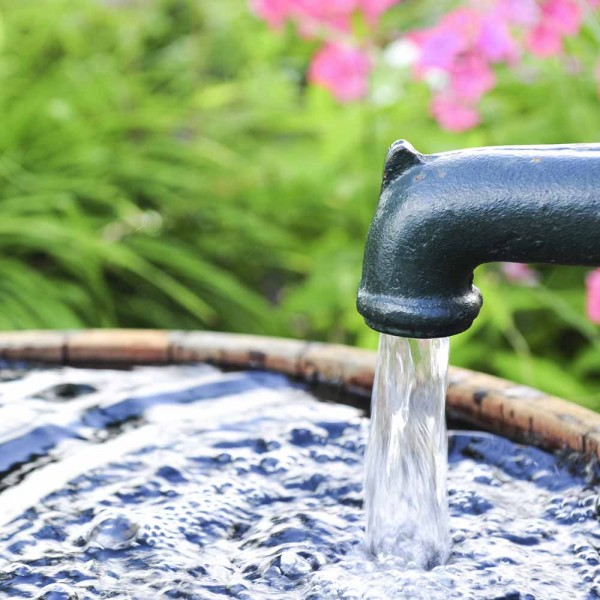 Brunnenwassertest Chemisch durch akkreditierten Probenehmer